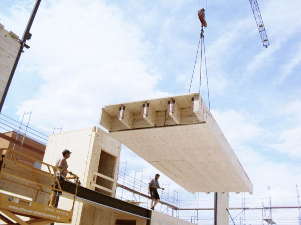 STEICO LVL budowa prefabrykaty